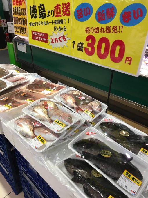★三杉屋ホームズ南津守店★やっぱり魚がオ…の画像