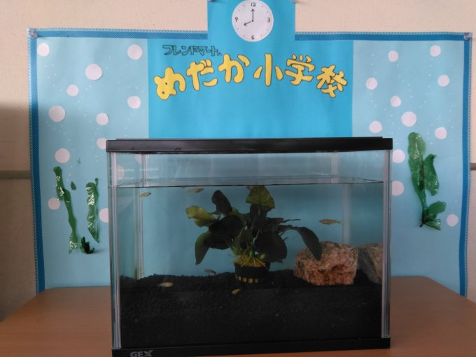 ★フレンドマート高槻氷室店★ 3月1日は創…の画像