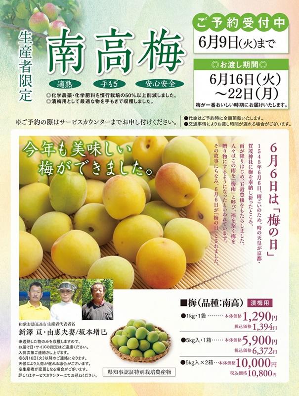 ★ラッキー枚方店さん★生産者限定【南高梅…の画像