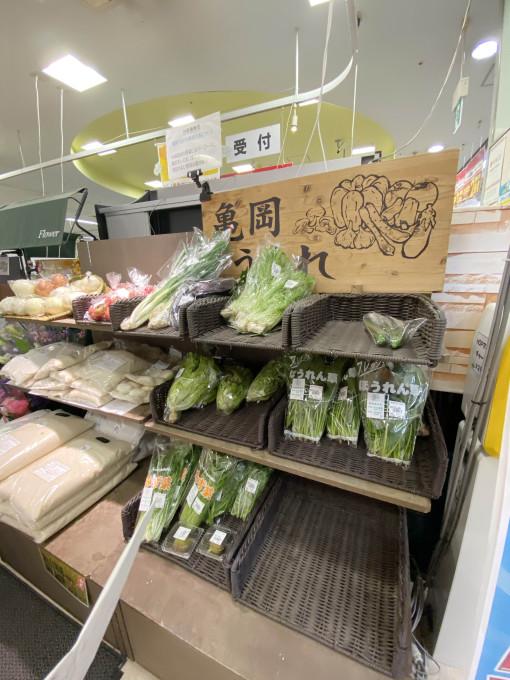 ★アル・プラザ高槻店★春を感じる商品ライ…の画像