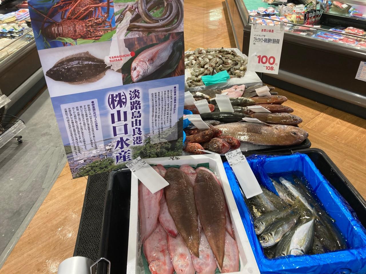 ★イズミヤ天下茶屋店★本日鮮魚あります!の画像